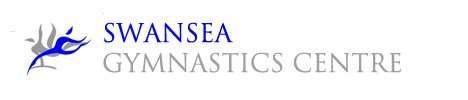 Swansea Gymnastics Logo Old